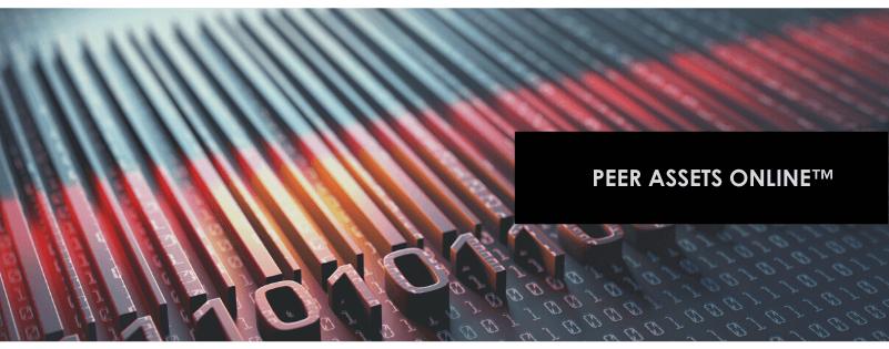 peer assets online
